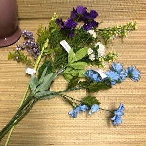 Variety of Spring Flowers